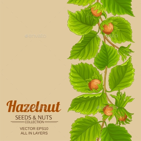 Hazelnut Pattern on Color Background - Food Objects