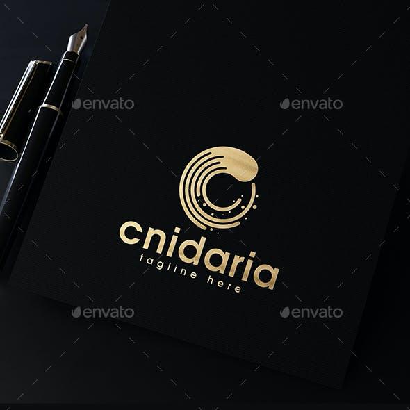 Cnidaria Logo