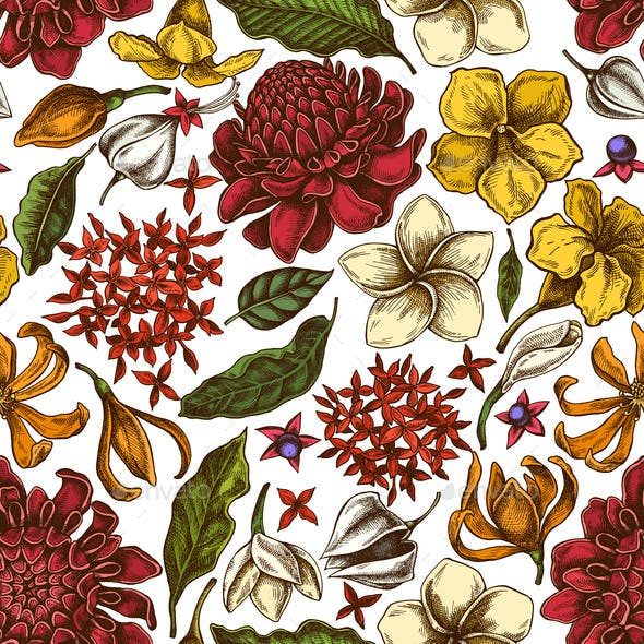 Seamless Pattern with Hand Drawn Colored Plumeria