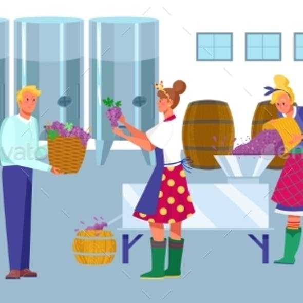 Wine Factory Production Process Work Winemaker