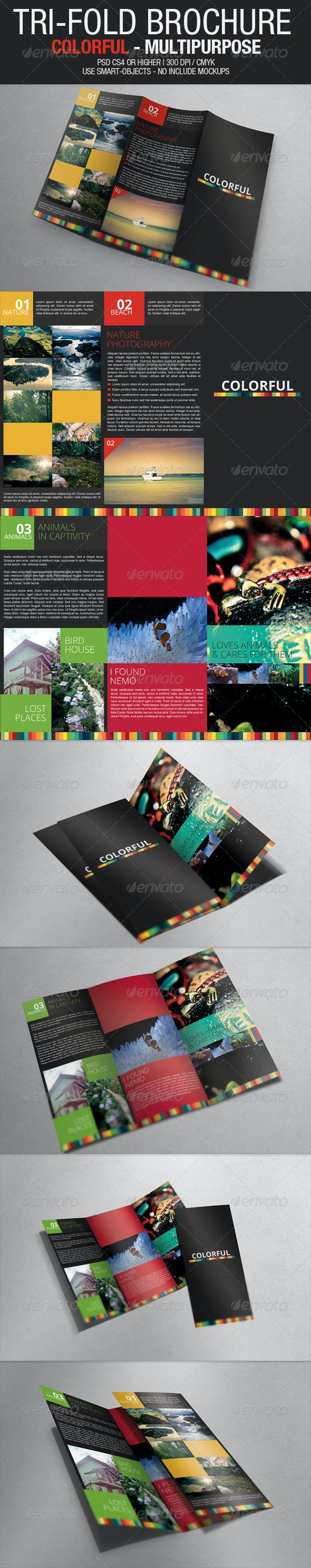 Tri Fold Brochure - Colorful Multipurpose - Brochures Print Templates