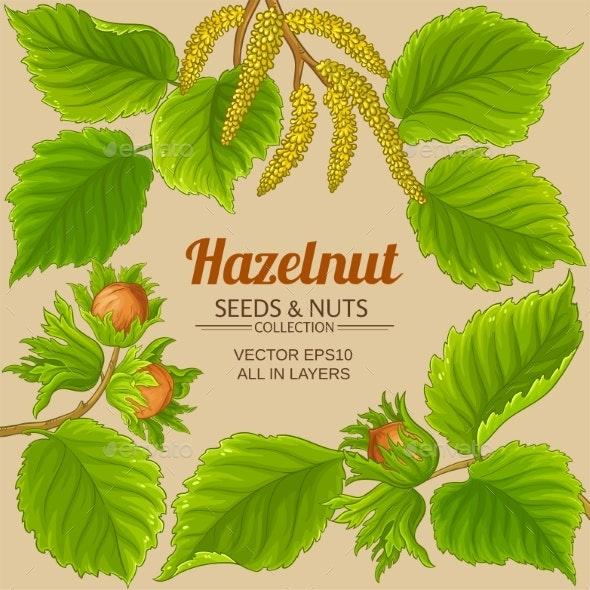 Hazelnut Frame on Color Background - Food Objects
