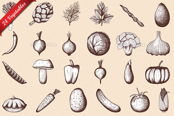 24 Vegetables Hand Drawn Sketch - Food Objects