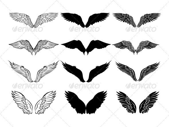 Wings design - Decorative Symbols Decorative
