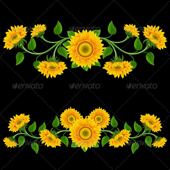 Sunflowers. - Flowers & Plants Nature