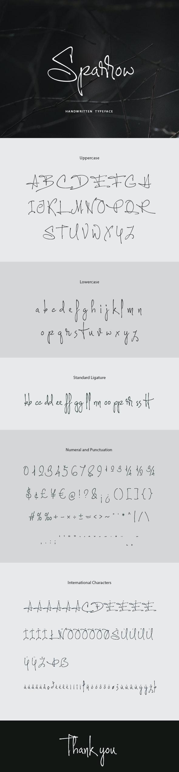 Sparrow Handwritten Font - Hand-writing Script