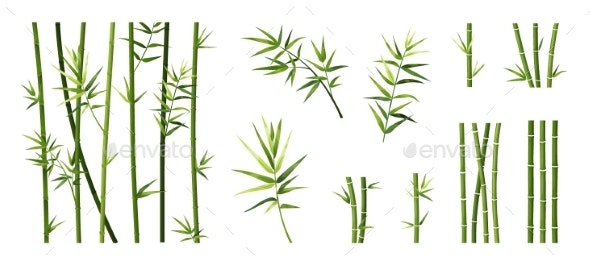 Bamboo Leaf and Stick - Flowers & Plants Nature