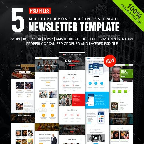 5 Business E-newsletter PSD Template