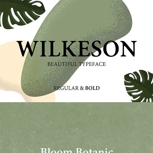 Wilkeson Modern Serif Typeface