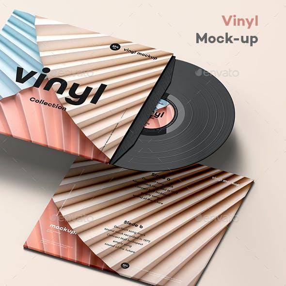 Vinyl Mock-up 5