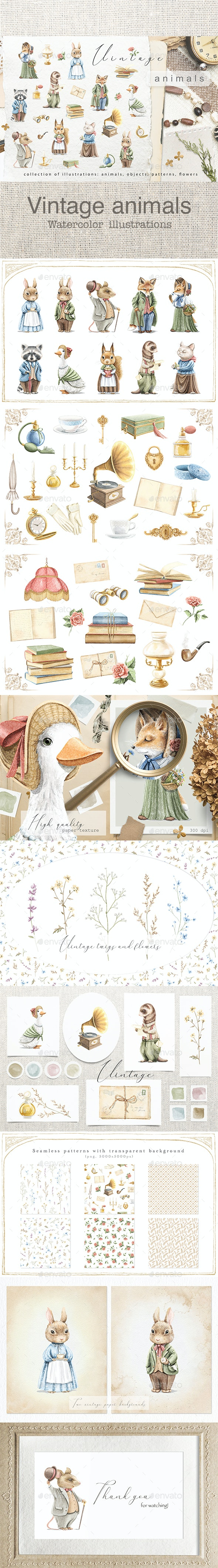Vintage animals - Animals Illustrations