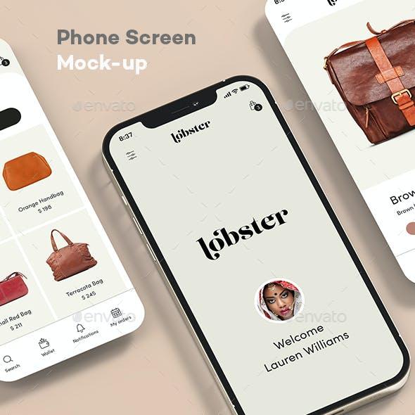 Phone Screen Mock-up