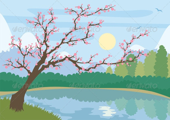Sakura - Landscapes Nature