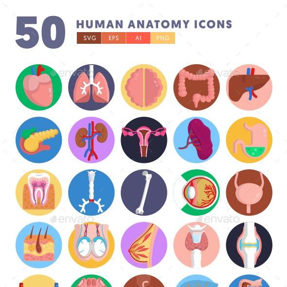 50 Human Anatomy Icons