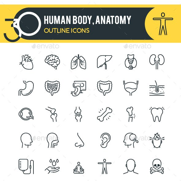 Anatomy Outline Icons