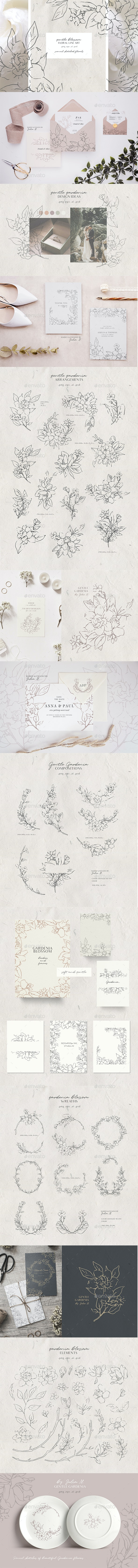 Gardenia Flowers Pencil Sketches - Line Art - Objects Illustrations