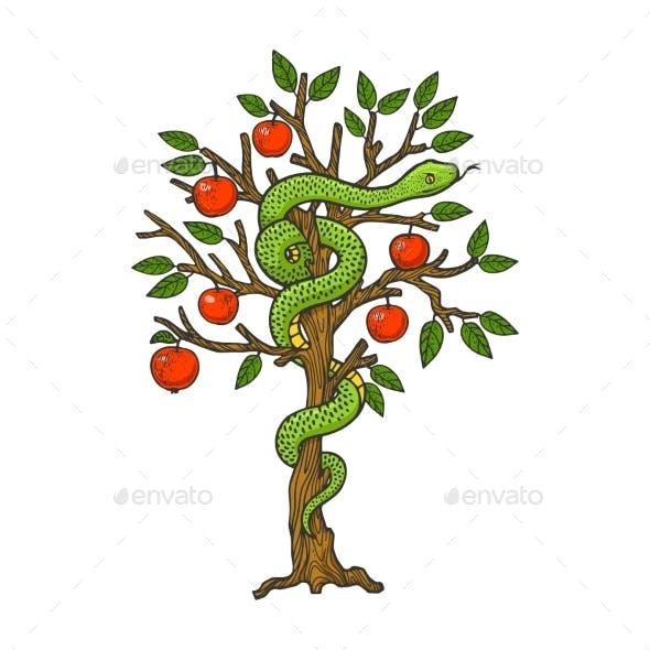 Serpent on Apple Tree Sketch Vector Illustration