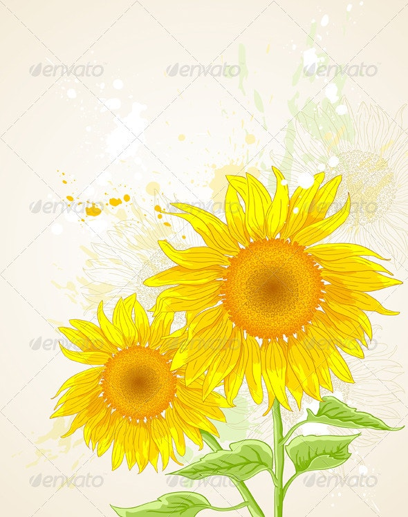Floral Background with Sunflower - Flowers & Plants Nature