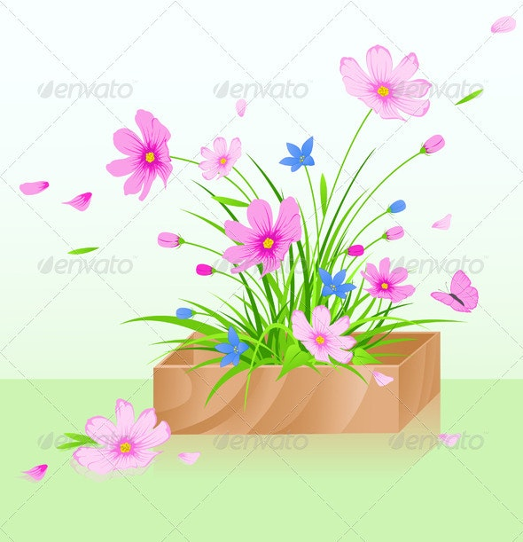 Wooden Box with Flowers - Flowers & Plants Nature