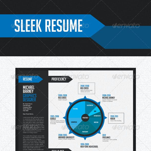 Sleek Resume
