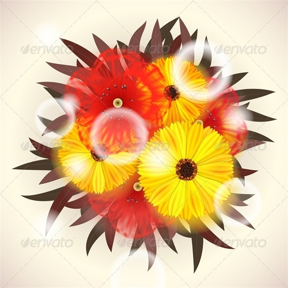 Summer Flowers - Flowers & Plants Nature
