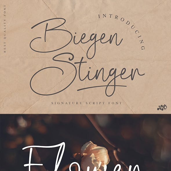 Biegen Stinger - Script Font