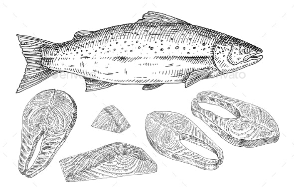 Salmon Fresh Fish Whole and Slices - Food Objects