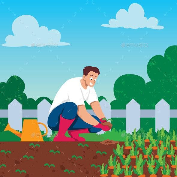 Man Growing Vegetables - Flowers & Plants Nature