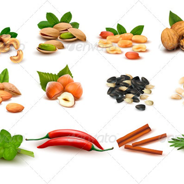 Big set of ripe nuts and seeds and spices