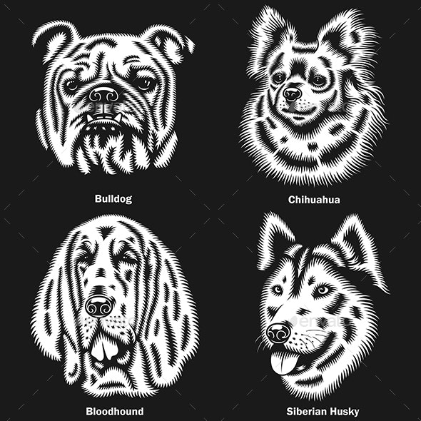 Dog Heads of different Breeds Vector Illustration On Black - Animals Characters