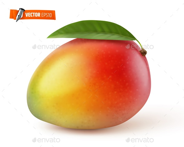 Vector Realistic Mango - Food Objects