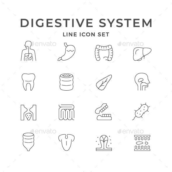 Set Line Icons of Digestive System