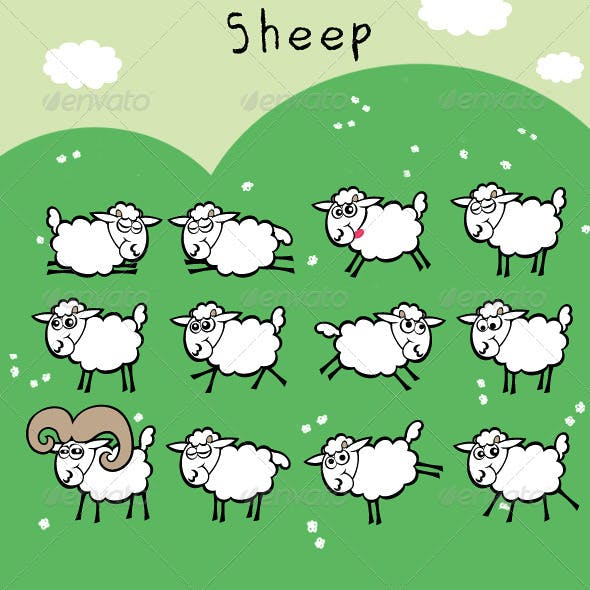 Sheep; Cute and Funny Flock with Ram