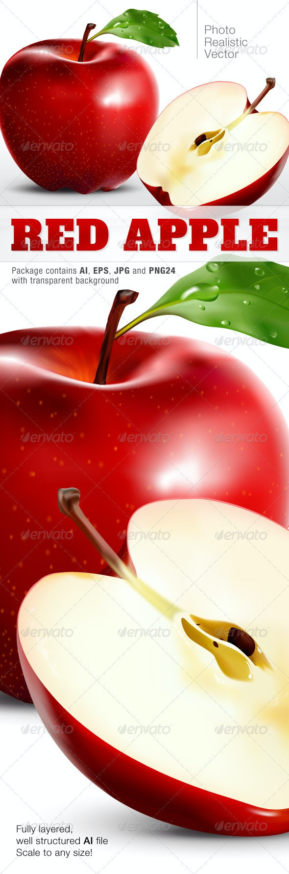 Photo Realistic Vector Apple - Food Objects