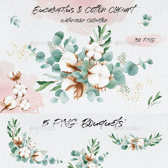 Watercolor Eucalyptus Leaves and Cotton Flowers Collection