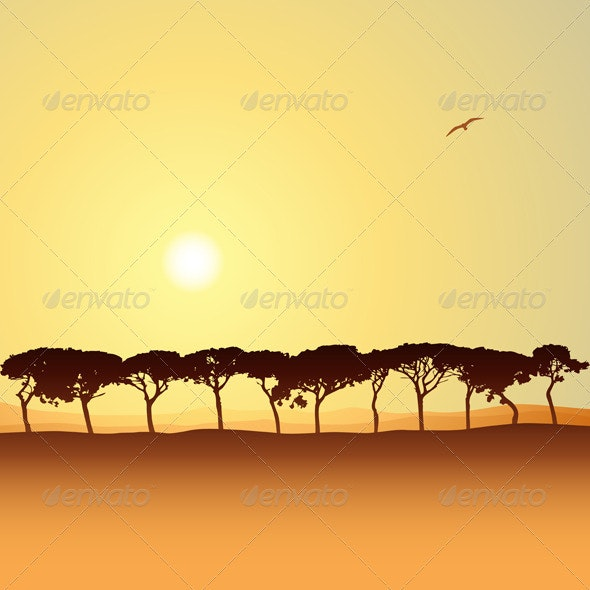 Line of Trees - Landscapes Nature