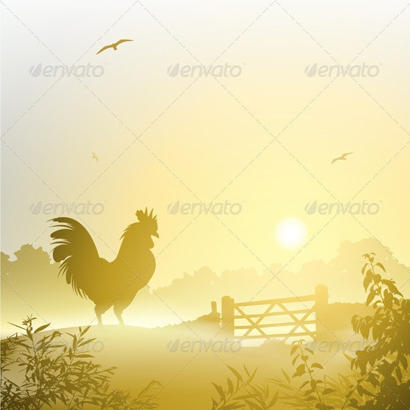 Cockerel, Rooster - Animals Characters