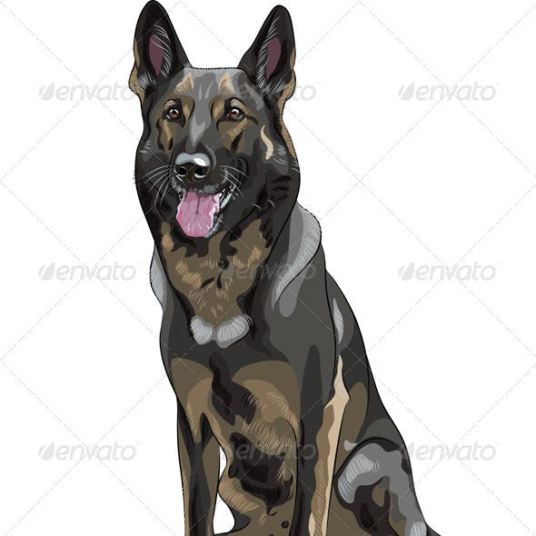 Vector Black Dog German Shepherd Breed