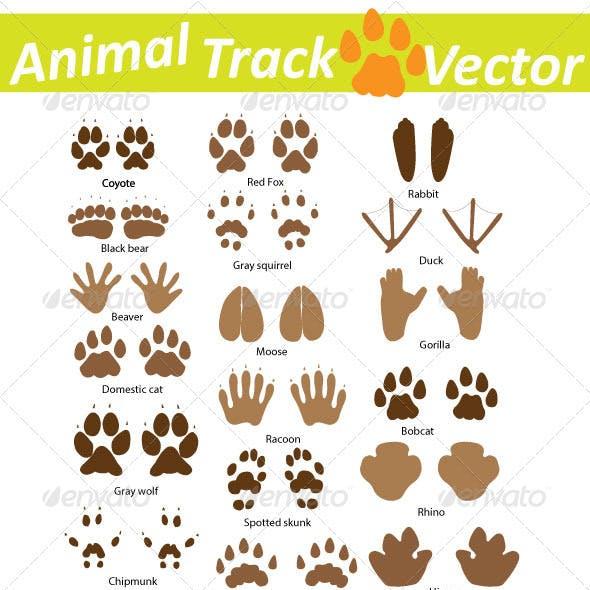 Animal Track Vector