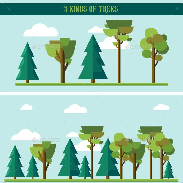 Set of Flat Trees and Pines