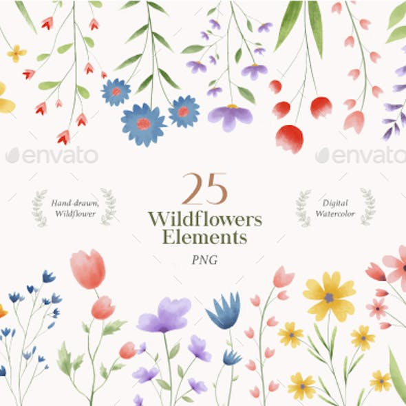 Wildflower Watercolor Png, Water colour Floral Clipart, Wedding Flowers Wreaths Frame