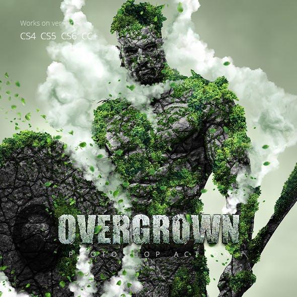 Overgrown Photoshop Action