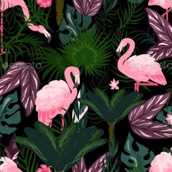 Flamingo Background