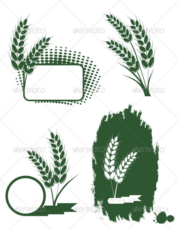 Wheat  - Decorative Symbols Decorative