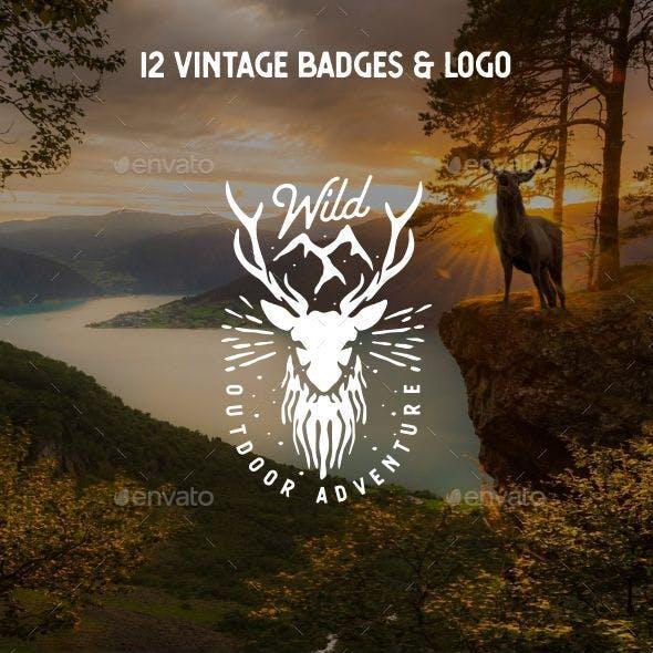 12 Vintage Retro Badges and Logo