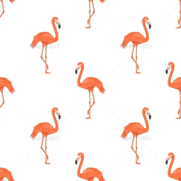 Seamless Flamingo Bird Pattern