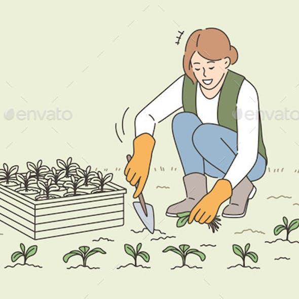 Agriculture Farming Growing Plants Concept