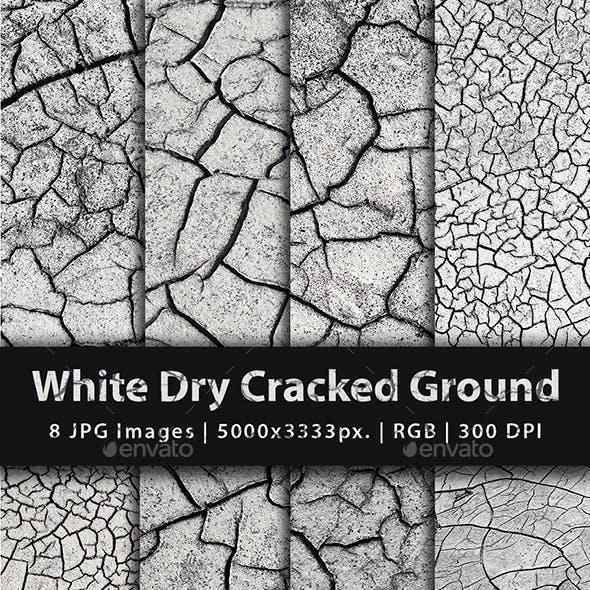 White Dry Cracked Ground