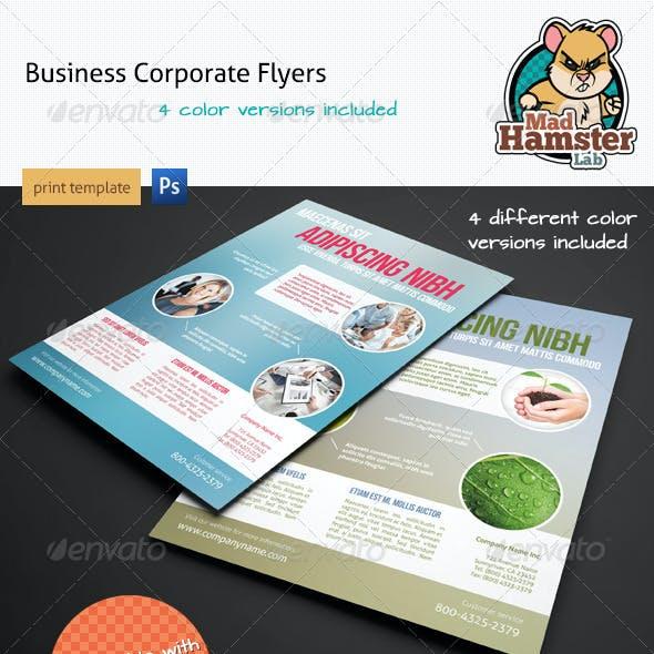 Modern Corporate Flyers / Magazine Ads