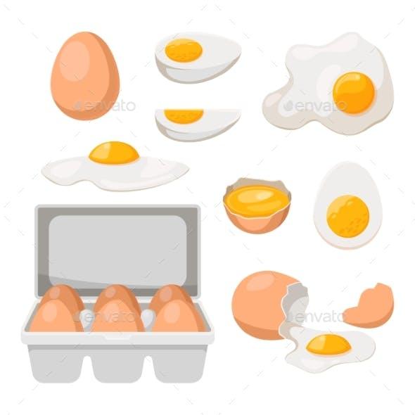 Eggs in Carton Box Tray and Broken Farm Product